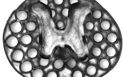 Impresión 3D y células madre para regenerar los daños en la espina dorsal