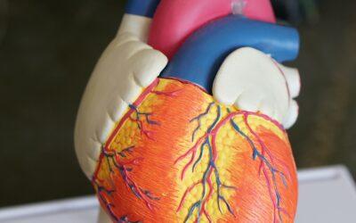 Células del cordón umbilical previenen la progresión de la nefropatía diabética